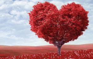 Los signos del amor